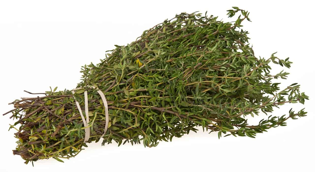 Foods that start with t - Thyme